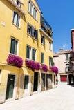 Blommar gul byggnad för antikviteten med terrassen med den rosa blommande petunian i Venezia royaltyfri bild