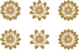 blommar guld- Royaltyfria Bilder