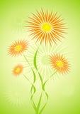 blommar hårigt vektor illustrationer