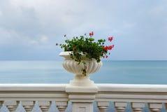 blommar havet Royaltyfri Foto