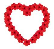 blommar hjärta Royaltyfria Bilder