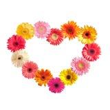 blommar hjärta royaltyfri foto