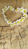 Blommar hjärta på träbakgrund arkivbild