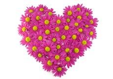 blommar hjärtapinkform arkivbilder