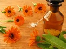 blommar homeopathic ringblommapills Royaltyfria Bilder