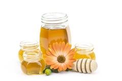 blommar honung Arkivfoton