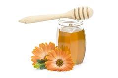 blommar honung Arkivbilder
