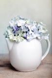 blommar hortensia royaltyfria bilder