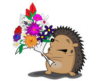 blommar igelkotten Royaltyfria Bilder