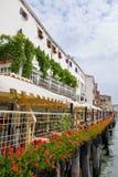 blommar italy den röda seafronten venice Royaltyfri Bild