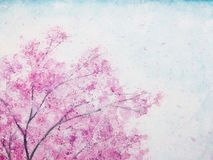 Blommar körsbärsröda blomningar för vattenfärg sakura stock illustrationer