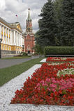 blommar kremlin moscow russia Arkivfoto