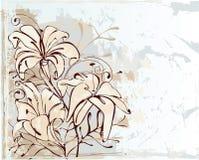 blommar liljan Stock Illustrationer