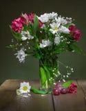 blommar livstid fortfarande royaltyfri bild