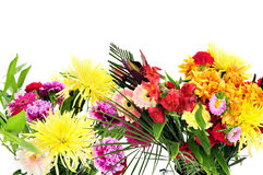blommar många Arkivbild