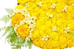 Blommar magasinet Arkivbild