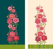 blommar mallowen Arkivbild