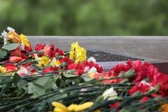 Blommar minnesmärken 9 kan, dagen av segern, minne Arkivbild