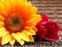 blommar musik Arkivfoto