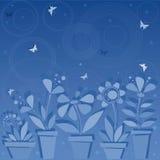 blommar natt Arkivfoton
