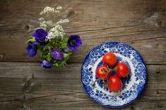 blommar nya plattatomater Arkivbild
