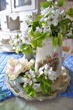 blommar nytt Royaltyfria Bilder