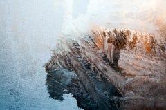 Is blommar på exponeringsglas - textur arkivbild
