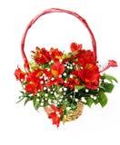 blommar punneten Royaltyfri Foto