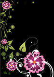 blommar purple Royaltyfria Bilder
