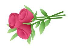 blommar röda ro Arkivbild