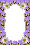 blommar ramen royaltyfri bild