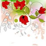 blommar red Arkivfoton
