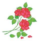 blommar red steg Royaltyfri Illustrationer