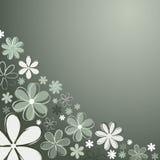 blommar retro Fotografering för Bildbyråer