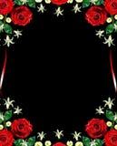 blommar ro Royaltyfri Foto
