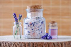 Blommar salt och nödvändig olja för lavendel med ny lavendel på stubbe Royaltyfria Foton