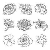 Blommar samlingen Royaltyfri Fotografi