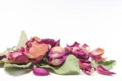 Blommar sammansättning av torkat steg blommor valentin för dag s Drie Royaltyfria Bilder