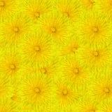 blommar seamless tileable Royaltyfria Bilder