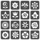 blommar set symboler