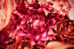 blommar silk Royaltyfria Foton