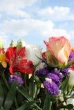 blommar skyen Arkivfoton