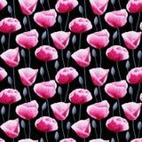 Blommar slår ut den sömlösa modellen för vattenfärgen med vallmo och Arkivbild