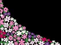 blommar sommar stock illustrationer