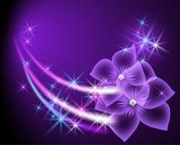 blommar stjärnor vektor illustrationer