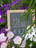 Blommar till salu Royaltyfria Foton