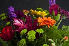 blommar tropiskt arkivfoton