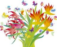 blommar tropiskt Arkivbild