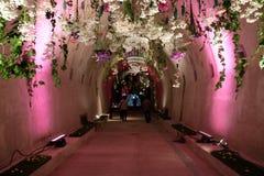 Blommar utsatt på Floraart, trädgårds- utställning för international 52 i tunnelen Gric i Zagreb Arkivfoto