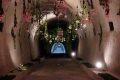 Blommar utsatt på Floraart, trädgårds- utställning för international 52 i Zagreb Fotografering för Bildbyråer